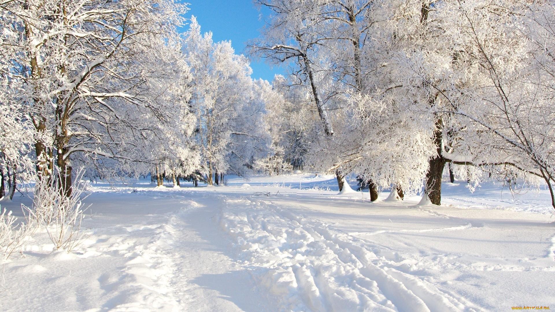 Обои зима для рабочего